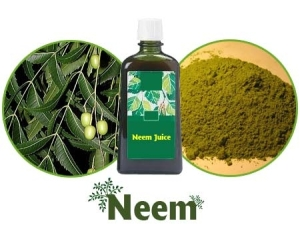 Photo Credit: http://www.remediespoint.com/wp-content/uploads/2011/10/Benefits-of-Neem-include-anti-fungal-Neem-Properties.jpg