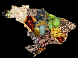 Allegorical Map of Brazilian Agricultural Products Photo Credit: José Reynaldo da Fonseca via Wikimedia Commons
