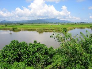 Myanmar Landscape Photo Credit: Colegota via Wikimedia Commons