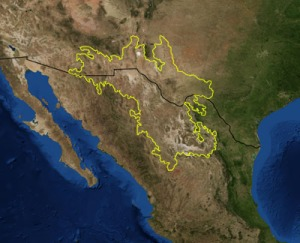 Chihuahua Desert Photo credit: Pfly via wikimedia commons