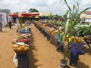 """""""2010 Farmers Day Ashanti Region Ghana 5262946799"""" by Trees ForTheFuture - Ghana-KITA Best Insitution Award-December-2010. Licensed under CC BY 2.0 via Commons"""
